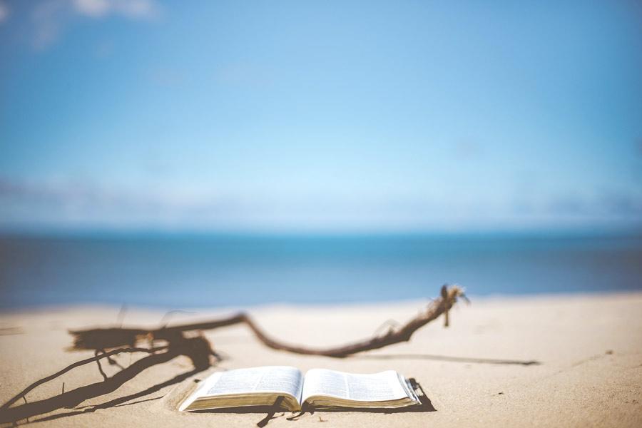 hábitos de estudio en verano